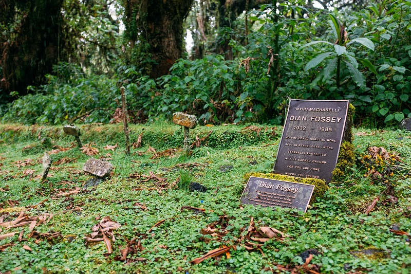 Tumba de Dian Fossey