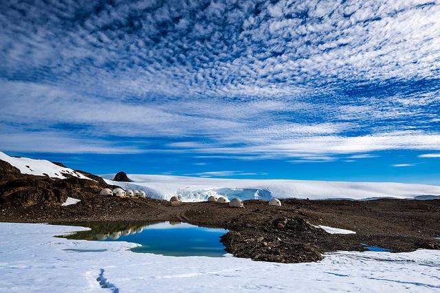 campamento antartida