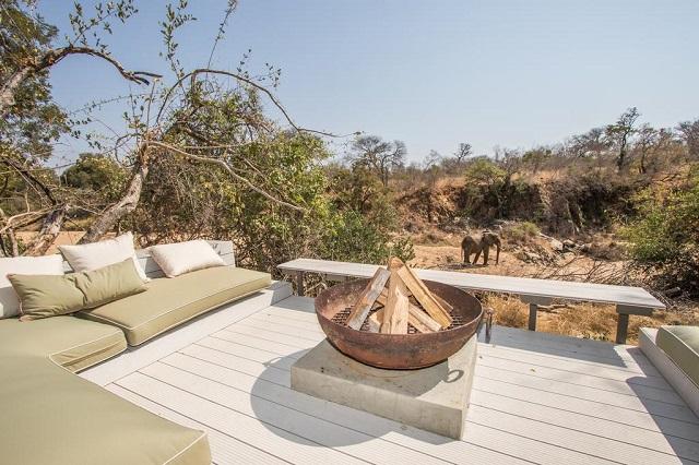 Vista de elefantes desde una terraza