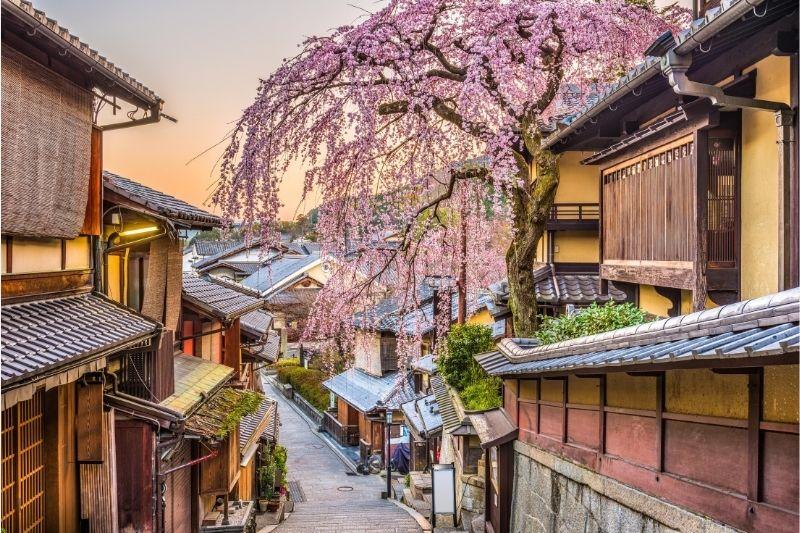 Kyoto en flor