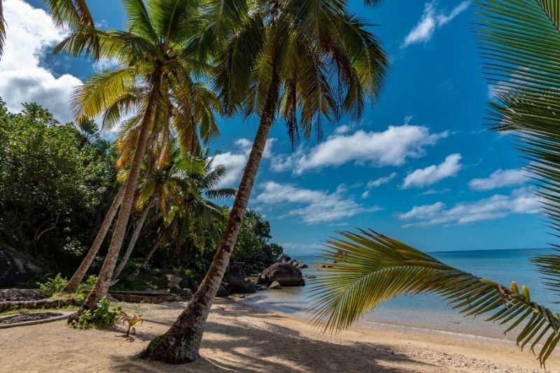 Playa Ile Aux Nattes