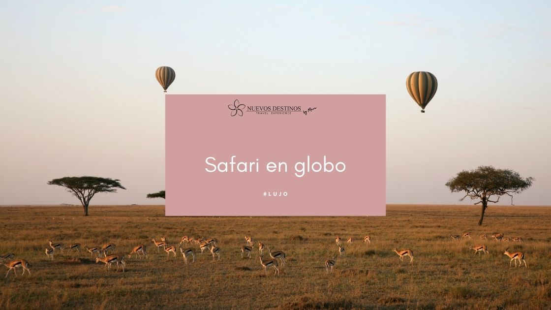 Safari en globo