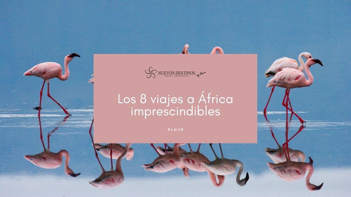 Los 8 viajes a África imprescindibles