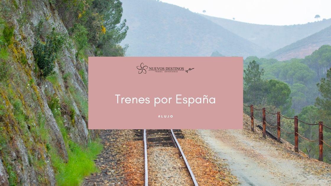 Viajes en tren por España: todas las claves